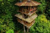 """Cặp đôi dành toàn bộ tài sản để """"xây nhà"""" trên cây trong rừng nhiệt đới Nam Mỹ"""
