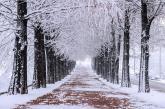 Đắm mình trong cảnh đẹp mùa đông xứ Hàn