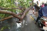 Lưu ý quan trọng khi ra đường trong trời mưa bão, giông lốc