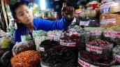 Xí muội Trung Quốc có chất cực độc
