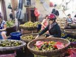 Hoa quả thối thành sinh tố
