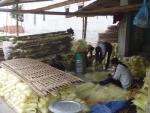 Kinh hãi: Sản xuất miến ăn từ bột đánh bóng công nghiệp