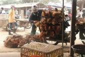 Phát hiện gà loại thải nhập lậu như thế nào?