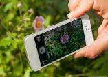 iPhone 5S sẽ có máy ảnh 12 megapixel?