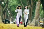 Thiếu nữ Việt lãng mạn mùa lá sấu rụng