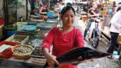 Phát hiện cá tầm nhiễm chất cấm tại chợ Hà Nội