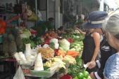 Rau an toàn Hà Nội: Phun thuốc cực độc, thu hoạch trong ngày
