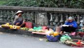 Tranh nhau nhặt hoa quả thối để bán
