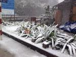 Tuyết đang rơi rất dày tại Sapa