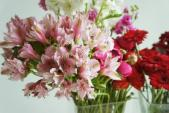 Cách cắm hoa đẹp rực rỡ trang trí nhà đầu xuân