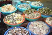 """Thông tin """"Thủy sản ở Hà Nội ăn kim loại"""" là chưa chính xác"""