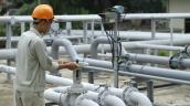 Nước máy Hà Nội còn nhiều độc tố vượt ngưỡng cho phép