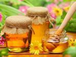 Mật ong không dược dùng chung với các loại thực phẩm này