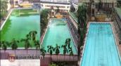 Clip bể bơi tại Hà Nội sục hóa chất biến nước bẩn thành sạch
