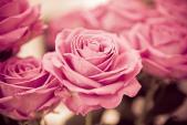 Làm đẹp bằng cánh hoa hồng