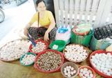 Trứng vịt lộn Trung Quốc làm dân Việt hoang mang
