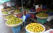 Hoa quả Việt lên ngôi