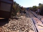 Tai nạn nghiêm trọng, đường sắt Bắc - Nam tê liệt nhiều giờ