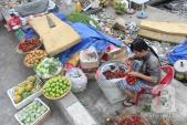 Sài Gòn: Trái cây rớt giá mạnh, nông dân tiểu thương đều lo lắng