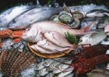 Cách nhận biết cá chứa urê, hàn the