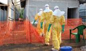 Đại dịch Ebola giết chết 729 người ở Tây Phi