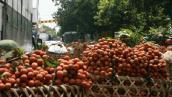 Giảm xuất khẩu trái vải sang Trung Quốc
