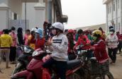 Giòi lúc nhúc trong hàng loạt thức ăn Việt