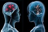 Khám phá sự thay đổi của não khi đạt cực khoái