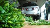 Nông dân Việt tậu xe hơi... chẳng giống ai