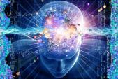 So sánh thú vị giữa não người già và trẻ