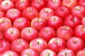 4 loại thực phẩm phòng chống ung thư tiền liệt tuyến