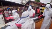 Hàng loạt bác sĩ tử vong vì nhiễm Ebola