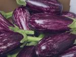 Những loại rau sống tưởng bổ nhưng cực độc