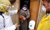 Người thứ 10 tử vong vì cúm gia cầm H5N1