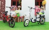 Đi xe đạp điện tiết kiệm hàng triệu đồng mỗi năm
