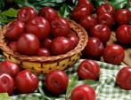 7 loại quả ăn nhiều có hại cho sức khỏe