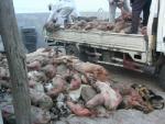 Trung Quốc liên tiếp bắt giữ đối tượng sản xuất và buôn bán thịt lợn bẩn