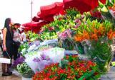 Kinh nghiệm buôn bán hoa ngày Tết vốn ít lãi nhiều