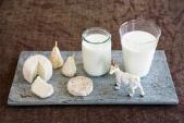 Dưỡng da trắng mịn đón Tết bằng sữa dê