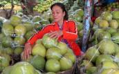 TP HCM giá trái cây bắt đầu tăng cao