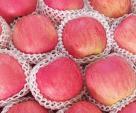 Kinh nghiệm chọn hoa quả ngon và an toàn cho ngày Tết