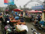 Chợ Hoa Quảng Bá nhộn nhịp trước ngày 8/3