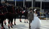 Màn rước dâu bằng đàn ngựa gây náo loạn phố phường