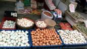 Phú Yên: Giá trứng gia cầm giảm mạnh