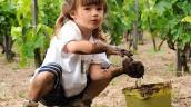 Giải mã chứng bệnh khiến trẻ chỉ thích ăn đất cát