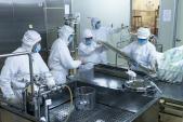 Việt Nam đạt tiêu chuẩn để xuất khẩu vaccine