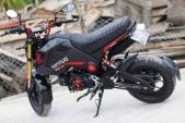 Honda MSX 125 đỏ đen nhám hầm hố