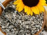 Tổn thương não do thiếu vitamin E