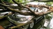 250 ôtô đã bị hư hỏng trong siêu giông tại Hà Nội