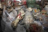 Bất ngờ về nguồn gốc số thịt bò đông lạnh 40 năm ở Trung Quốc